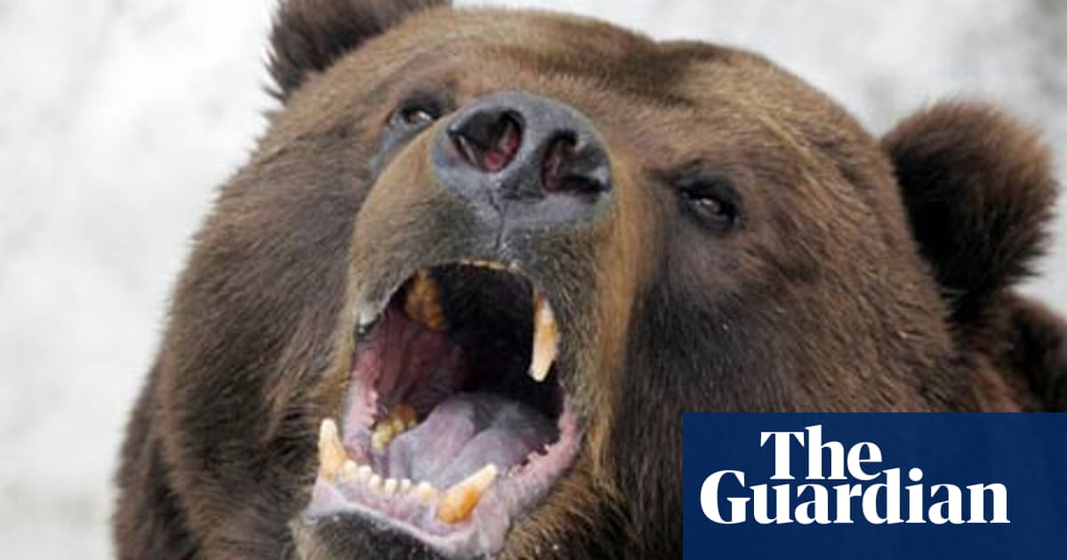 russian man in bear cave