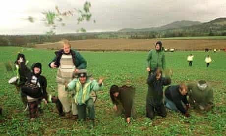GM protesters uproot oilseed rape plants near Edinburgh