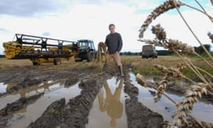 Jack Storey at his farm near Morpeth, Northumberland. Crops ruined by weather