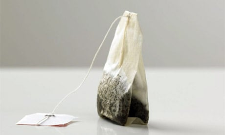 https://www.theguardian.com/environment/2010/jul/02/teabags-biodegradeable