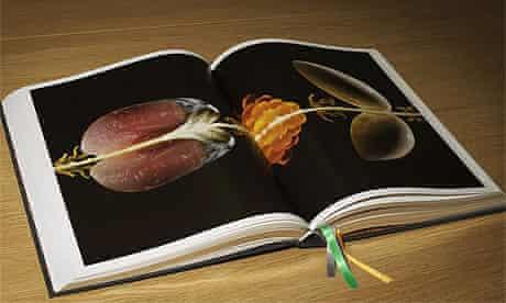 Heston Blumenthal's Big Fat Duck Cookbook