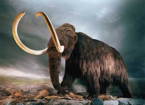 carbon dating mammoth