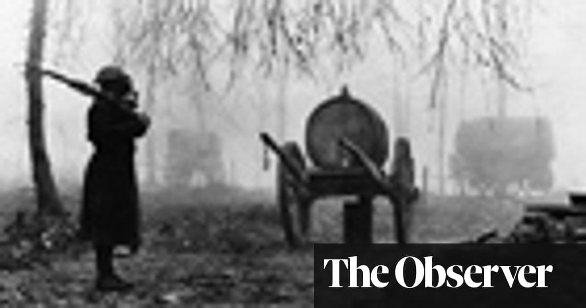 Timeline: Key battles on the western front | World news