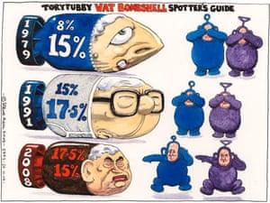 27.11.2008: Steve Bell on spotting a VAT tax bombshell