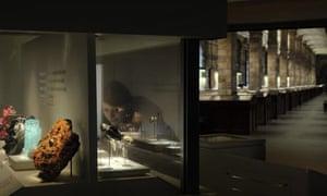 vault natural history museum