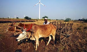 An Indian farmer tends his land in Dhule amid wind turbines at Suzlon Energy's windfarm