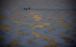 Gallery 24 hours in pictures: Men cut ice blocks off the frozen Songhua river