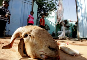Gallery Eid al-Adha: Sudanese man skins a slaughtered goat