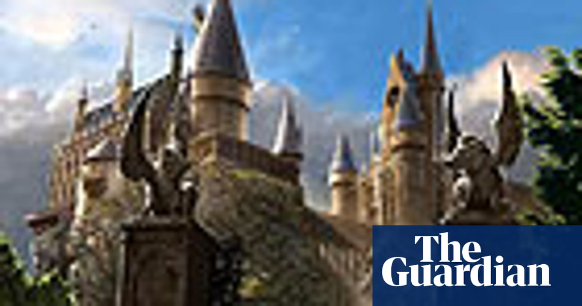 The Harry Potter Night Sorting Hat quiz | Global | The Guardian