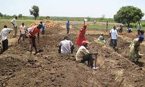 Katine farmers dig the foundations of the sub-county's produce store