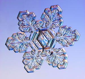 Gallery Snowflakes: A Split Plate snowflake