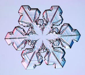 Gallery Snowflakes: A Sectored Plate snowflake