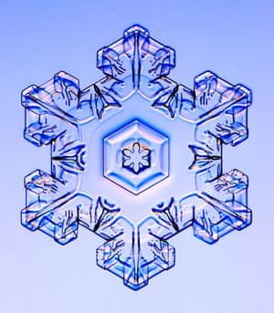 Gallery Snowflakes: A Stellar Plate snowflake