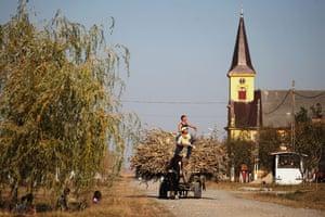 Herta Müller: A horse drawn cart in Nitchidorf, Romania, Herta's native village