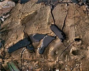 Edward Burtynsky Oil: Recycling #10, Chittagong, Bangladesh 2001