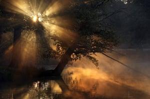 Autumn: Dunham Massey, Altrincham