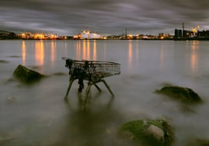 Landscape photograph: Food for thought, Aberdeen Harbour, Scotland