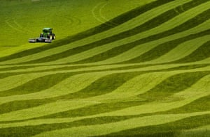 Landscape photograph: One man went to mow, Kimmeridge, Dorset, England