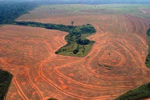 Environment decade: Aerial view of deforestation by soybean farmers in Novo Progreso, Brazil