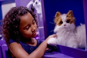 Top toys: A girl plays with a cat toy