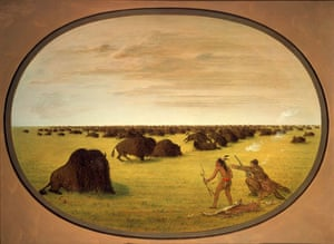 Obama white house art:  Catlin and Indian Attacking Buffalo by  George Catlin