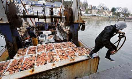 Monbiot blog : scallop dredging