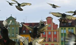 Reynek square, Wroclaw, Poland