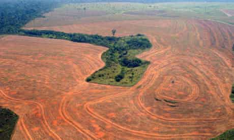 Deforestation in Novo  Progresso, Pará, in 2004 was the second worst on record