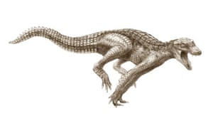 Ancient crocodiles: DogCroc