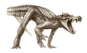 Crocodyliforms: Cretaceous Crocodyliforms from the Sahara