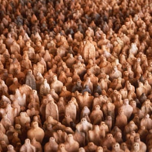 Art of a Changing World: Royal Academy of Arts presents GSK Contemporary, Earth : Antony Gormley