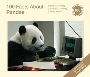 Books: Christmas gift guides books: 100 Facts About Pandas by David O'Doherty