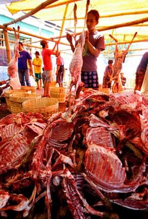 Eid al-Adha: Volunteers slaughter 8,000 sacrificial sheeps