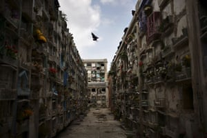 Guatemala morticians: A buzzard flies over the National Cemetery in Guatemala City