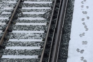 travel chaos: Footprints are seen in the snow at Clapham Junction