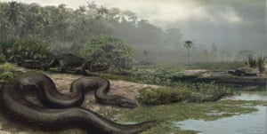 Science 2009: Giant snake remains discovered