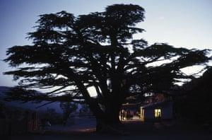100 places: Mount al-Makmal, Lebanon