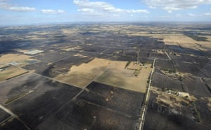 Australia fire aftermaths: Scorched farmland shows the extent of the devastating wildfires