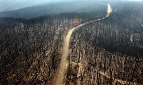 An aerial view of Kinglake, Australia after the bushfires