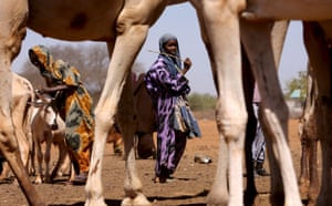 Severe drought : Severe drought in Kenya