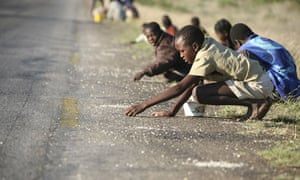 Children pick up corn kernels spilled from lorries on a roadside south of Harare