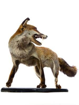 Take 10: Lost Property: A stuffed fox