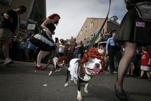 24 hours in pictures: Mardi Gras parade in New Orleans