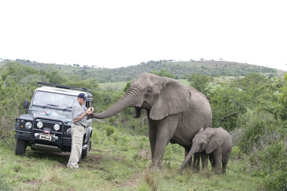 the elephant whisperer anthony lawrence spence graham lawrence anthony