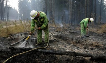Bushfires aftermath