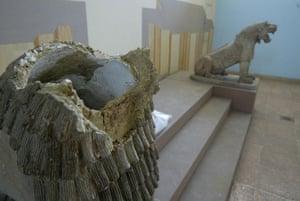 Baghdad museum :  The broken head of an Assyrian lion in BAghdad museum