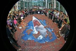 3D Street Art: Sharks