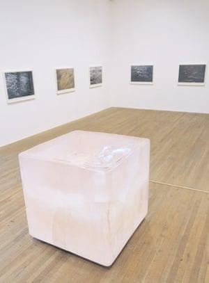 Roni Horn aka Roni Horn at Tate Modern