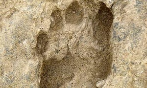 A fossil footprint left by a human ancestor about 1.5 million years ago in Kenya