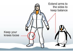 walk-like-a-penguin